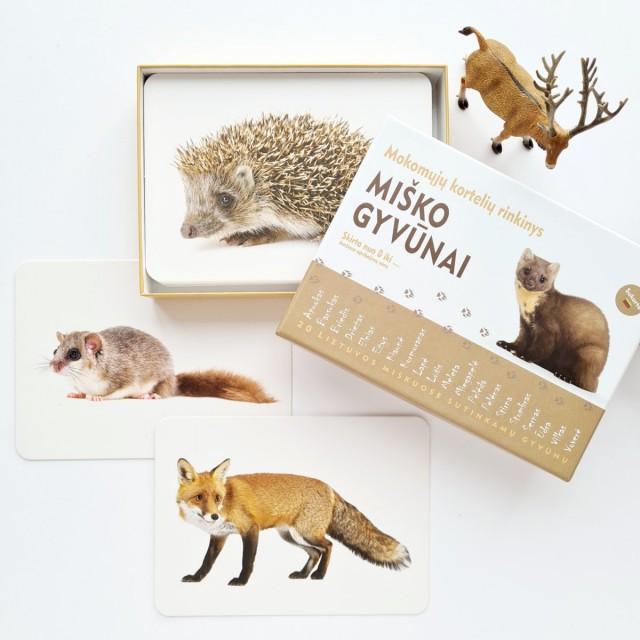 Miško gyvūnai - Mokomosios kortelės